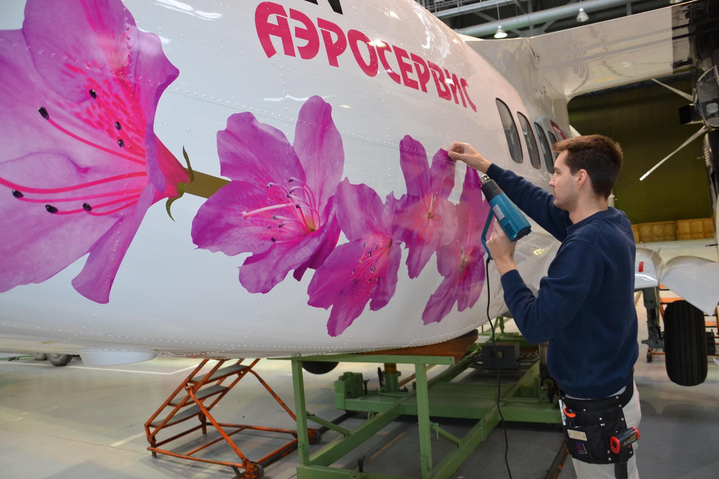 Фото самолета с цветами